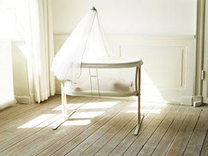 Modern Bassinet BabyBjorn canopy